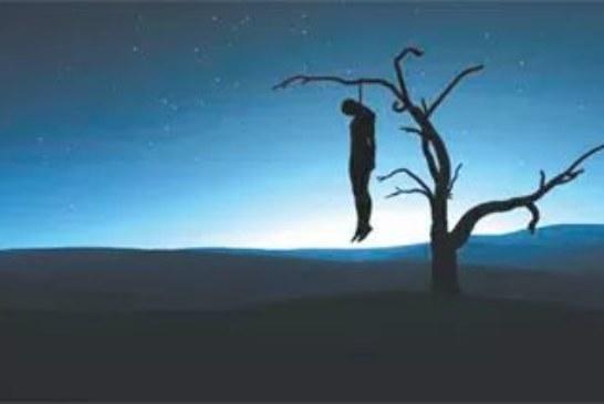 Sexual predator hangs himself