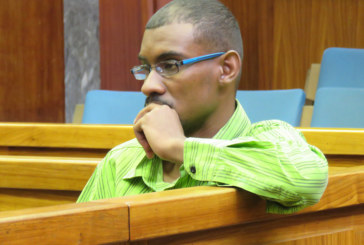 Alleged killer pleads not guilty to stabbing girlfriend 27 times