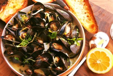 Harvesting of shellfish temporarily halted