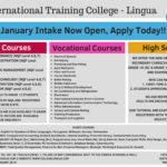 Lingua College