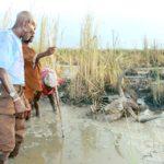 Etaka Dam is a death zone for livestock