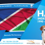 P&C Independence Day