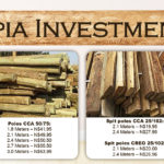 Sepia Investments