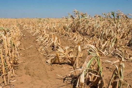 Drought stricken communities to receive help soon