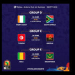 Fixtures for today's matches at the 2019 Afcon tournament