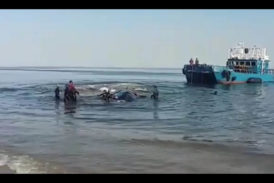 One last attempt to rescue stranded whale abandoned