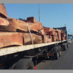 New timber regulations will benefit Namibians