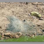 Fish poachers decimating inland fish resources