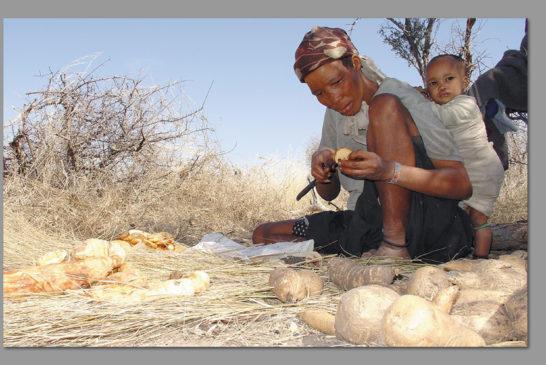Food security weakening