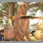 Namibian youth not interested in indigenous culture